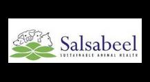 Salsabeel_logo
